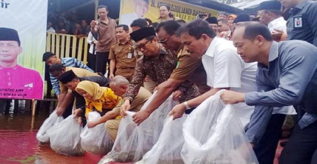 Budidaya Kerang Berkualitas Potensi di Kabupaten Rokan Hilir
